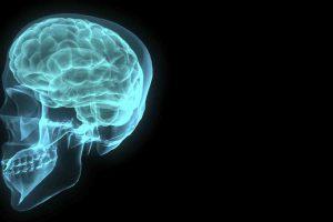 brain-001-1172516-1919x1184